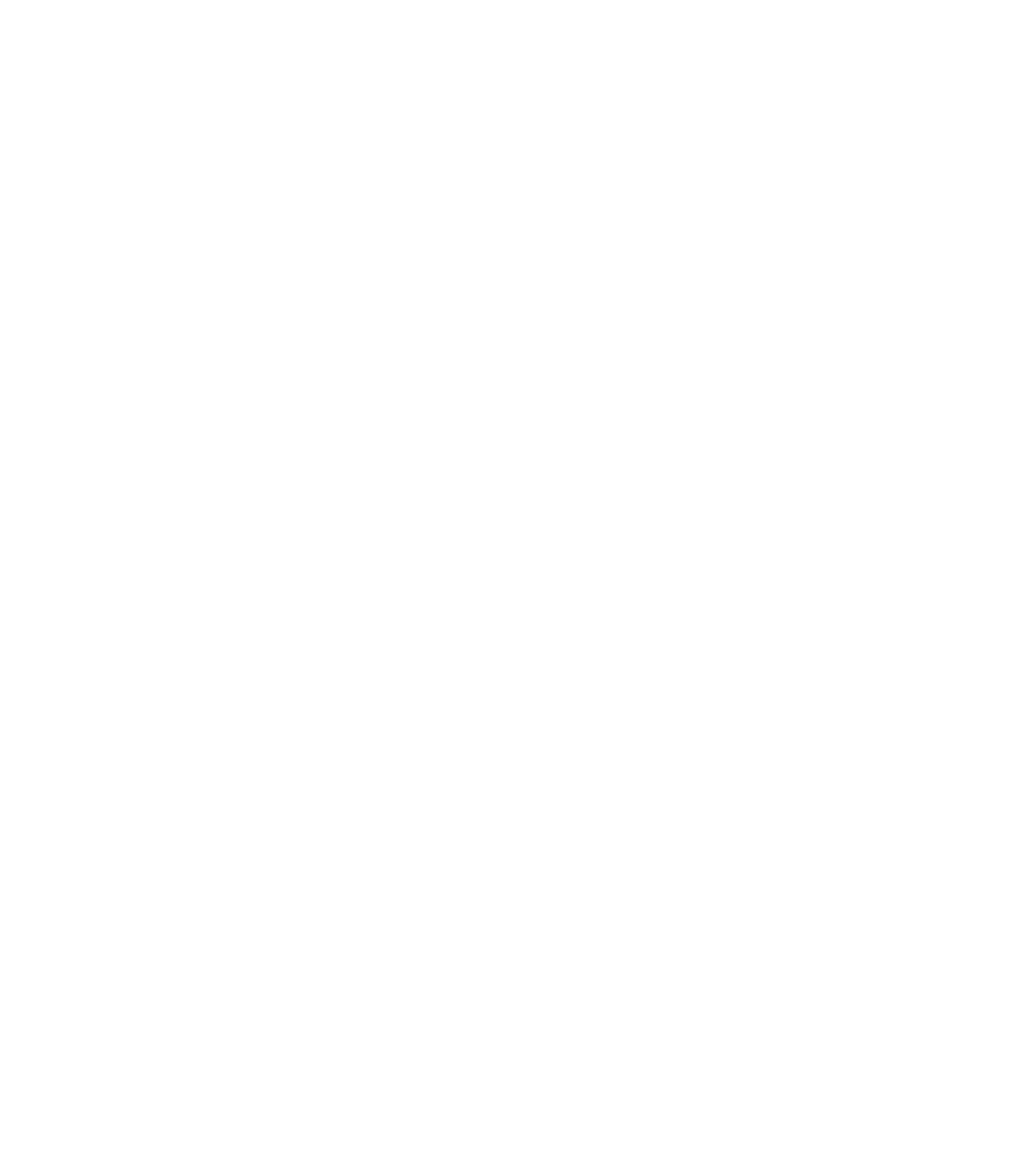 RURALIZATION - Logo_blanco